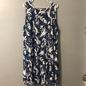 Adorable Loft Plus Peacock Dress